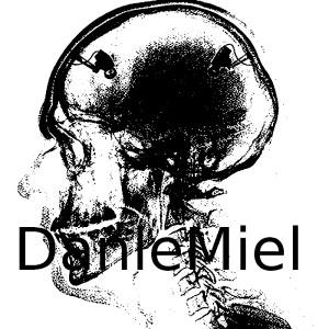 1a-danlemiel-SKULLSa