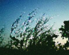 cc-breeze-1-2g6