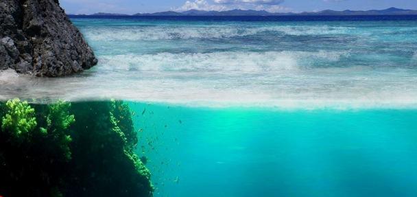 underwater-world1ccb